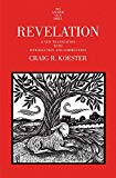 Image for Revelation: A New Translation with Introduction and Commentary (The Anchor Yale Bible Commentaries)