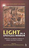 Image for Light in a Spotless Mirror: Reflections on Wisdom Traditions in Judaism and Early Christianity (Faith and Scholarship Colloquies)